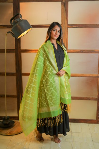 Gentle Green Chanderi Dupatta