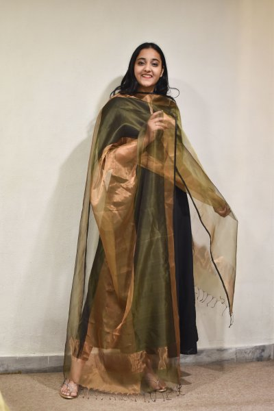 Green Golden Organza Dupatta
