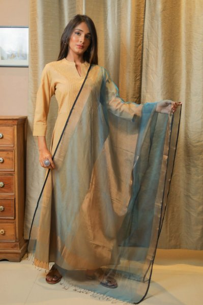 Sublime BlueGolden Organza Dupatta
